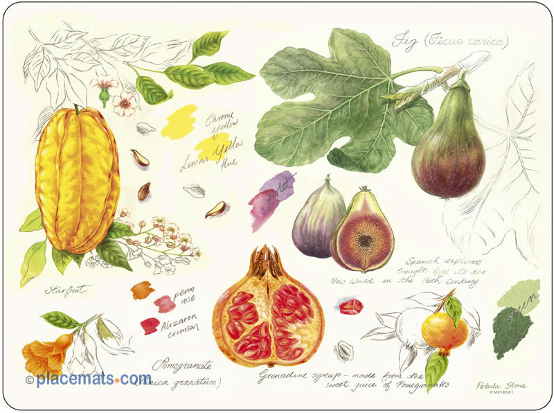 exotic fruits placemat...