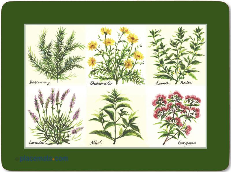 Placematscom Pimpernel Fragrant Herbs Placemats