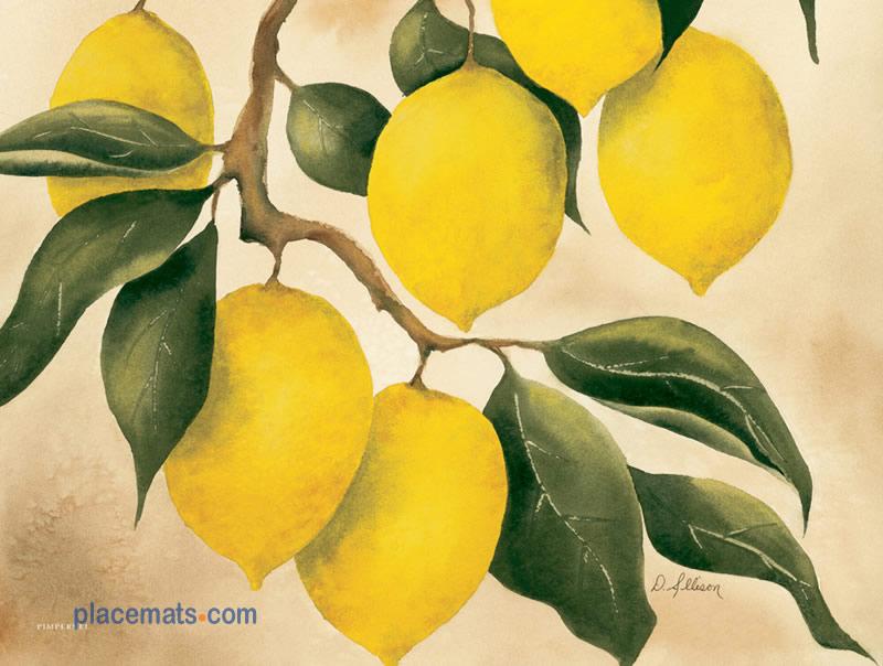 Placemats Com Pimpernel Orchard Lemon Placemats Cork